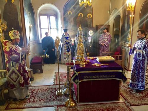 Литургија на празник Светог Теодора Тирона (24.02.2018)